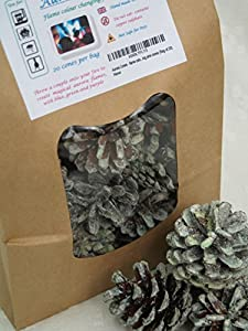 Aurora Cones - Flame Colour Changing Pine Cones Bag Of 20 by kindlecone.co.uk