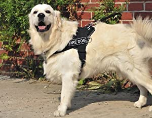 Dt Fun Works Harness Fire Dog Black With Reflective Trim X-large - Fits Girth Size 86cm To 119cm by DEAN & TYLER