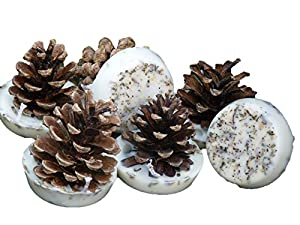 Kindlecone - Natural Pine Cone Firelighters - Spring Meadow - Box Of 12 by kindlecone.co.uk
