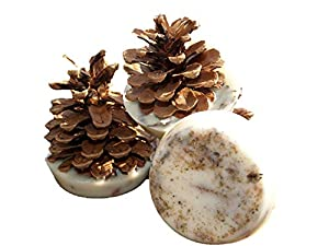 Kindlecone - Natural Pine Cone Firelighters - Summer Garden - Box Of 6 by kindlecone.co.uk